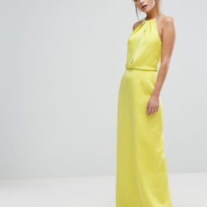 Ted Baker Maxi Dress With Chain Neckline - Liyanah