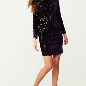 Next Purple Velour Sequin Bodycon Dress - Liyanah